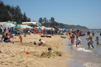 Dromana_beach